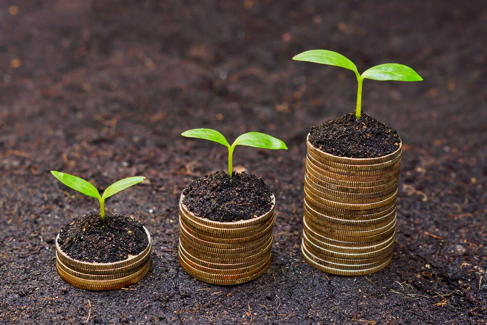 Geld groeit