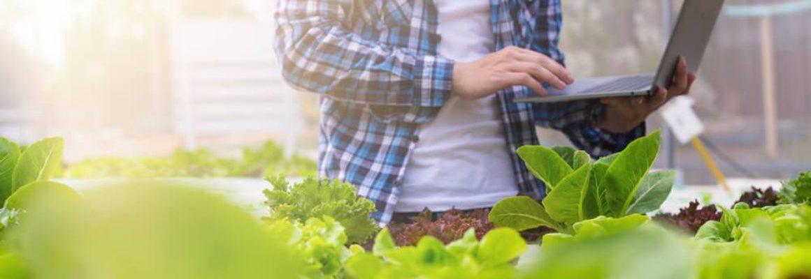 Verduurzaming, innovatie en digitalisering voeren de boventoon in de Food- & Agri sector