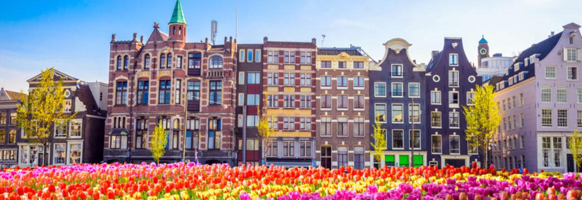 Zakendoen in Nederland Whitepaper