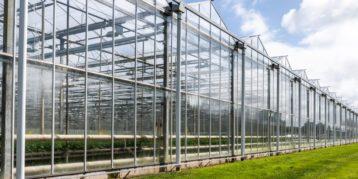 Coronavirus: tijdelijk borgstelling voor land- en tuinbouwbedrijven