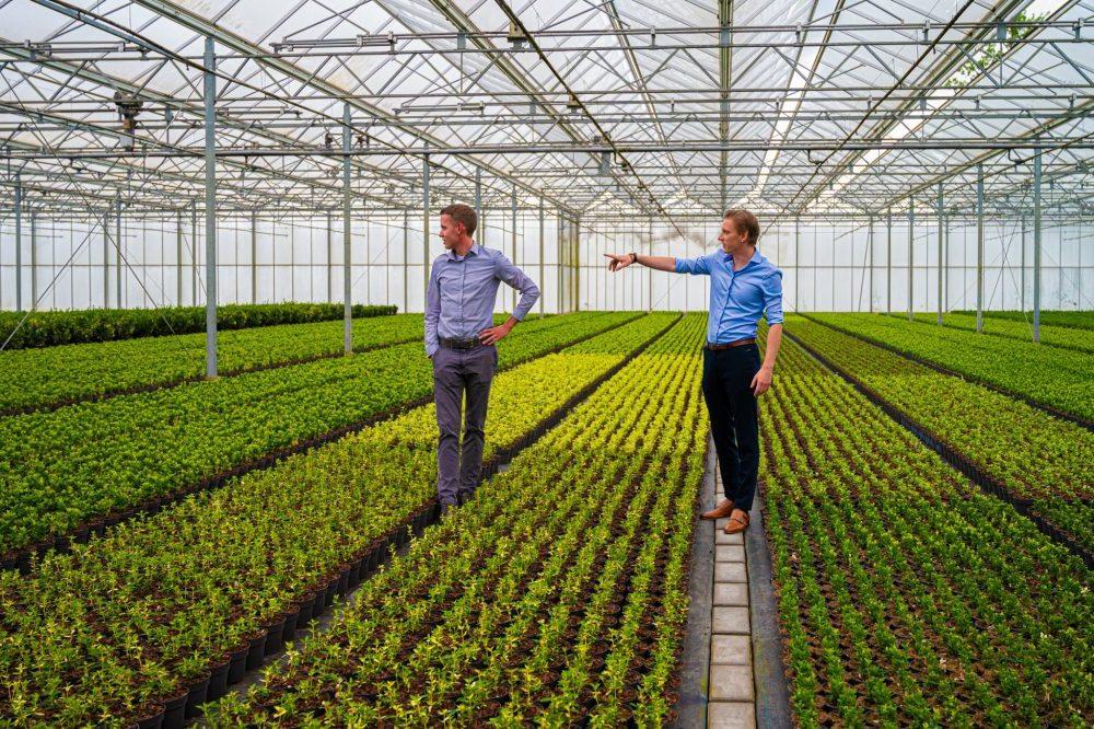 Agrarisch advies door Van Oers Agro