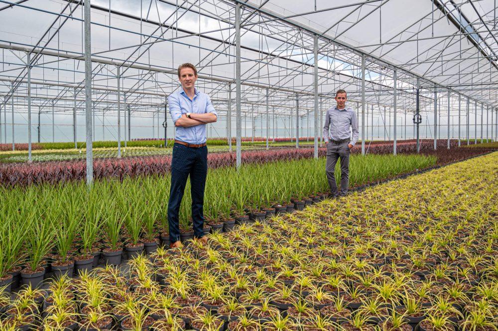 Over Van Oers Agro - wij helpen u vooruit!
