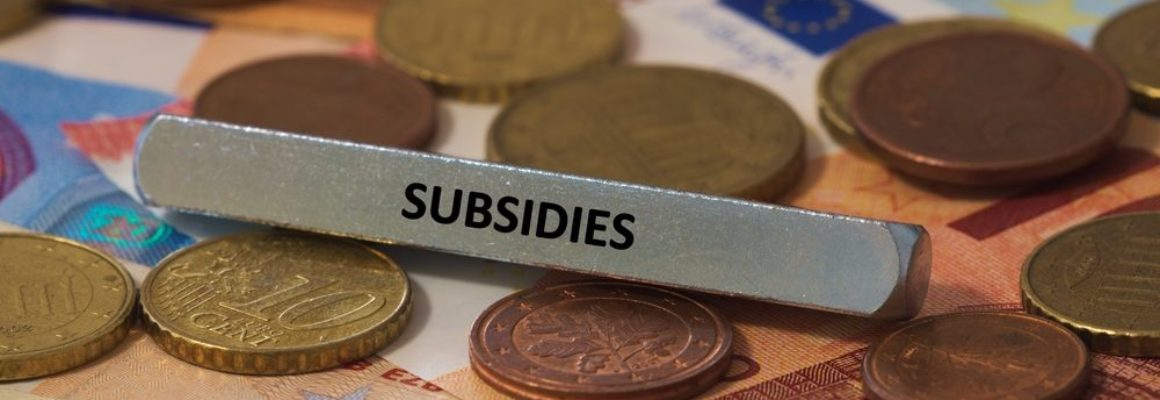 Vanaf 1 maart 2022 subsidie STAP voor scholing